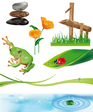 bamboo fountain, ladybug on leaf, frog on stones, leaf on water circles. All separated elements. Vector