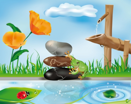 zen scene with bamboo fountain, frog on stones and ladybug on leaf Vector