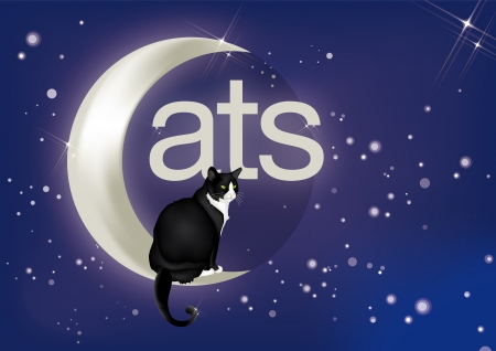 Beautiful black and white cat sitting on moon, with the inscription  Stock Vector - 14164258
