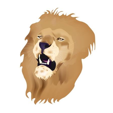 白い背景で隔離のとどろくライオン ヘッド
