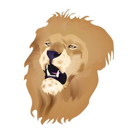 Roaring lions head isolated on white background Vector