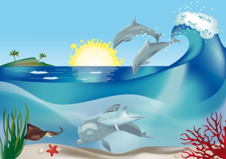 pacific ocean: Jumping and swimming dolphins underwater Illustration