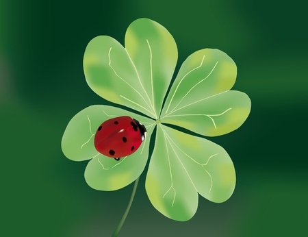 Ladybug on four-leaf clover with green background