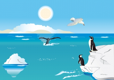 Polar scenery with penguins, whale and sea gull