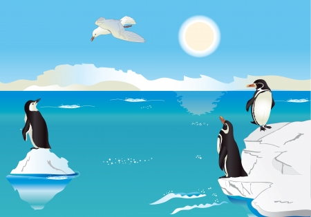cartoon penguin: Polar scenery with penguins and sea gull with simple gradients Illustration