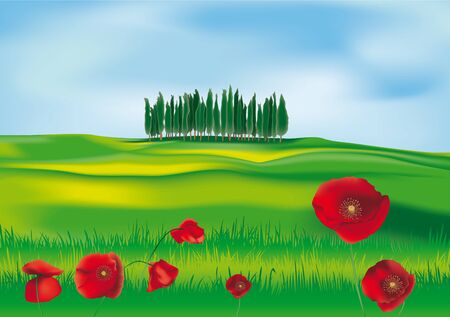Tuscan countryside with cypresses and poppies Vector