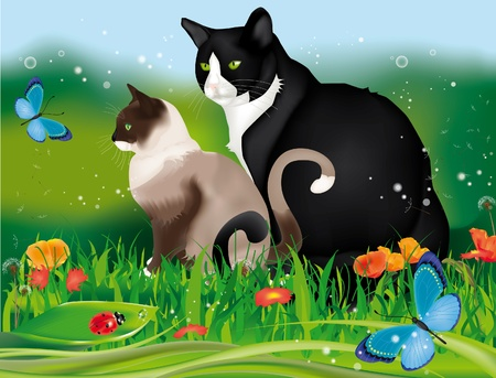 frisky: Lovely two cats in the garden among grass, flowers, ladybug and blue butterflies Illustration