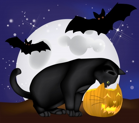 Black cat watching into a Jack-O-Lantern pumpkin with moon and bats Stock Vector - 15058001