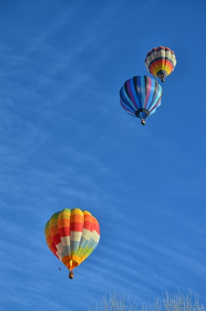 Three Multicolored and Striped Hot Air Balloons in the sky photo