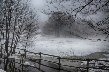 Surreal Wintry Scenery with Snow and Fog Banco de Imagens