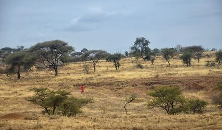 Traditional African Village with Masai Man Banco de Imagens