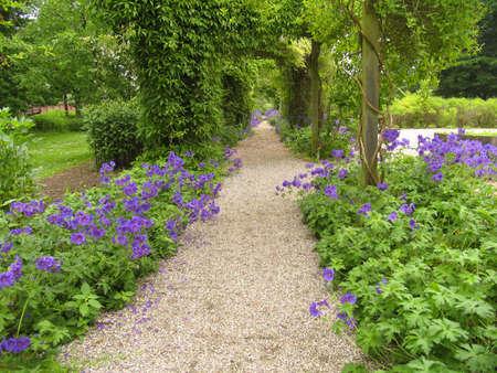 Old Danish garden at summertime.
