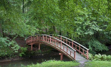 Nicea Wyżeł duński drewniany most w parku w summertime.