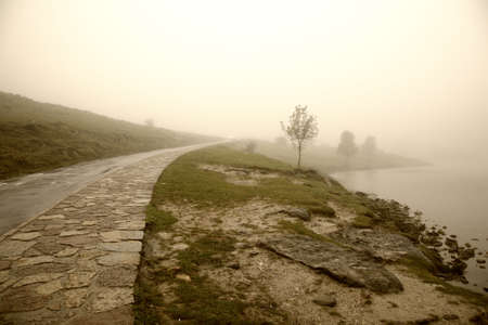 Misty morning by Lago Enol in the mountains of Picos de Europa - Asturias, Spain Stock Photo - 17816005