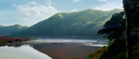 Two people passing small dam across the river in Andong. With bright summer sunshine, blue sky, colorful flower fields and birds in the water. Standard-Bild
