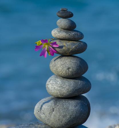 禅石と海岸