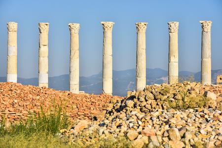 entranceway: Laodikeia columns