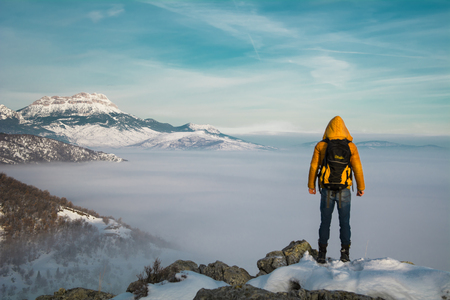 view tissue in misty mountains