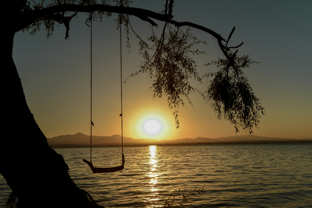 swing in the tree and the sunrise