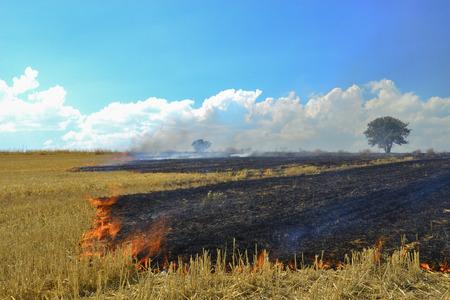 rural stubble grass fires Stock Photo