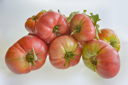 pure natural tomatoes from branch Stock Photo