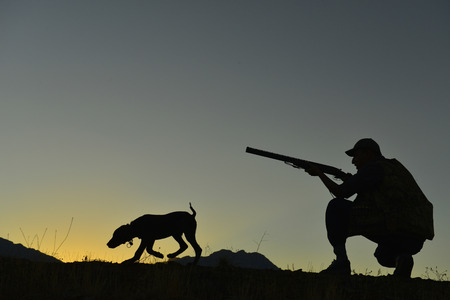 狩猟犬と狩猟シーズン 写真素材