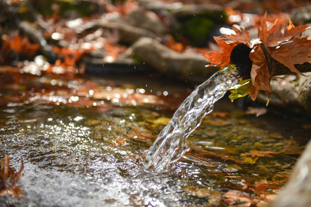 reddening: the waters of the fountain and autumn leaves Stock Photo