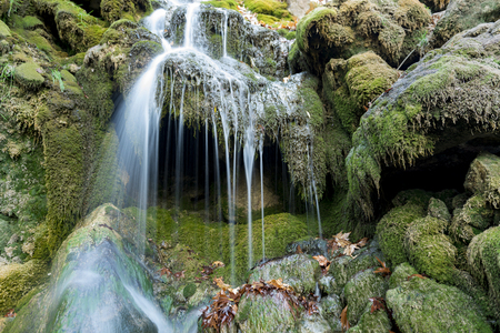 water quality: the waters of the waterfall and algae