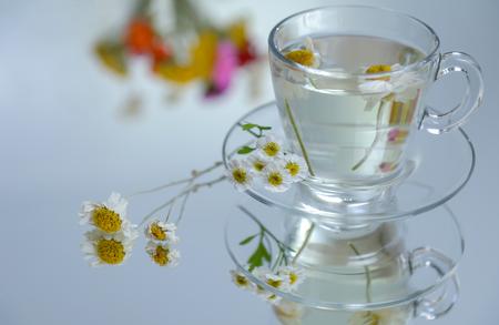May chamomile tea