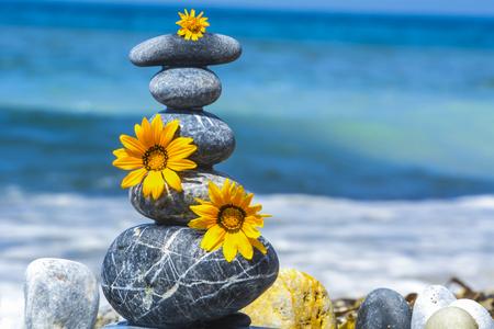 energy needs: zen stones, flowers and peace concept