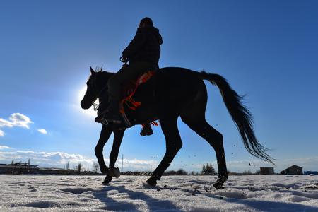 Horse riding man silhouette