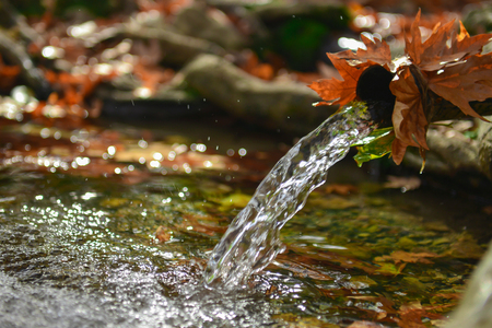 healthy drinking water from natural source