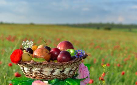 fruit basket among flowers in nature Stok Fotoğraf