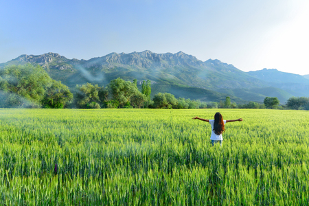 crops, nature and peaceful concept Stok Fotoğraf - 118954802