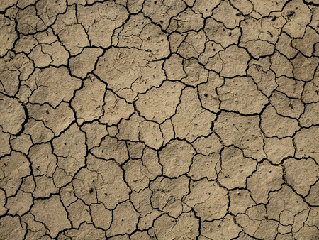 soil cracking, thirst, summer heat and water losses Stok Fotoğraf - 118955044