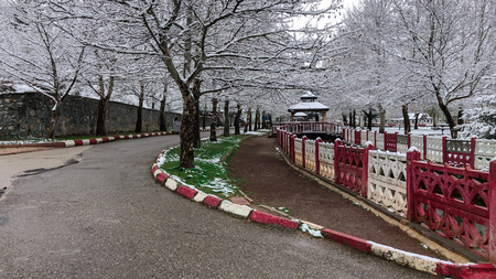 park and trees with last snowfall Stok Fotoğraf