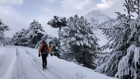 The story of a man who constantly explores for snowy mountains, spectacular landscapes, frequent woodlands and exploration