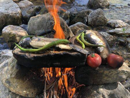 cooking fish on stone by burning wood fire in water stream