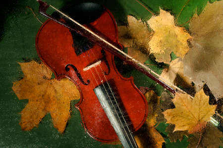 oil lamp: Violin and autumn leaves on the green background across a water drops on glass. Stock Photo