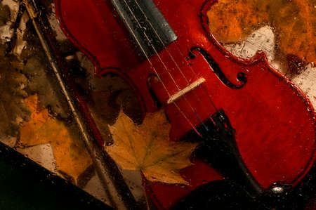 Violin and autumn leaves across a water drops on glass. Stok Fotoğraf