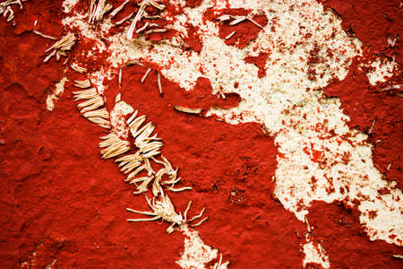 Old red scratched wall with withered plant Stock Photo