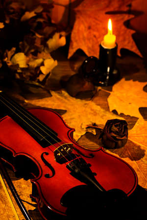 Violin and autumn leaves on the on the table in light of candle in the dark room. Close-up of violin. Focus on the strings. Banco de Imagens