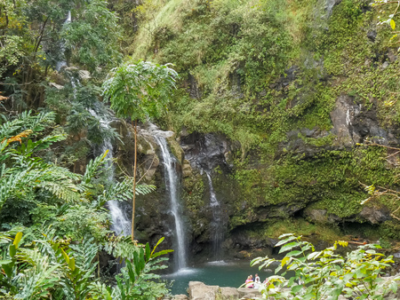 lush waterfall in rain forest at road to hana in maui, hawaii