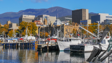 HOBART, AUSTRALIA - APRIL 16, 2015: close up view of fishing vessels at victoria dock in the tasmanian capital city of hobart on a fine autumn day with mt wellington in the distance Editorial