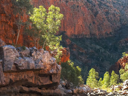 view of the gorge walls at ormiston gorge in the west macdonnell ranges