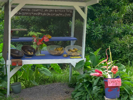 a variety of freshly cut flowers and fruit for sale at a roadside stand on the road to hana 版權商用圖片