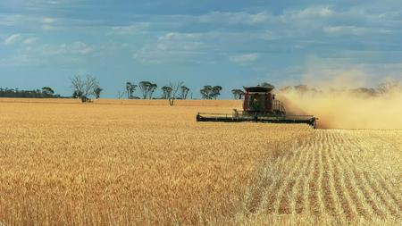 een maaibord wordt gebruikt op een West-Australische tarweboerderij om te oogsten