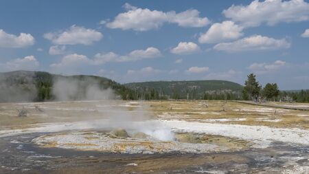 view of jewel geyser in yellowstone np