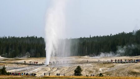 wide shot of the impressive beehive geyser erupting in yellowstone 写真素材