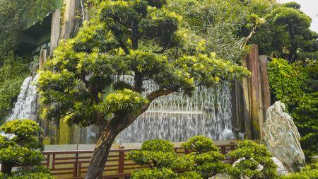 tree and a man made waterfall at nan lian gardens in hong kong